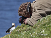 Puffin Photography by Hugh Harrop